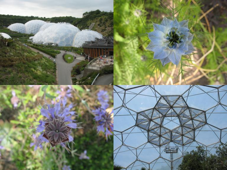 Pictures from the Eden Project